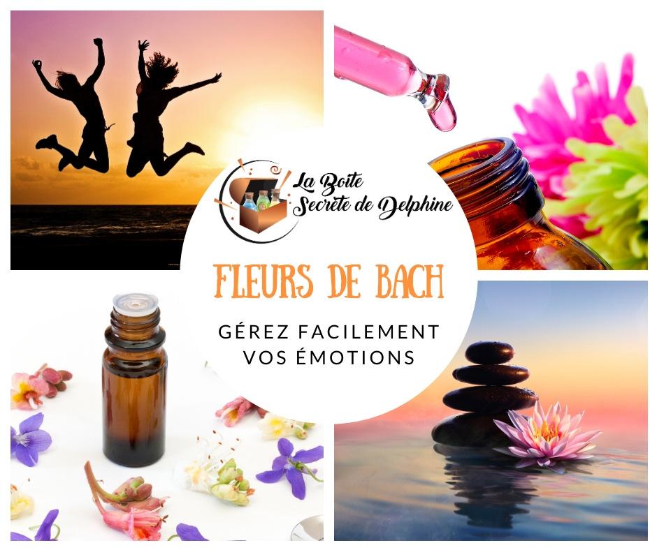 Illustration de l'article : Comment gérez facilement vos émotions en 1mn/jour avec les fleurs de bach ?